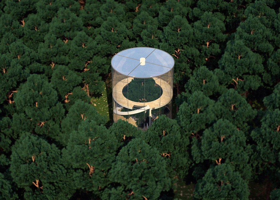 Cea mai tare casă în copac pe care ai văzut-o vreodată