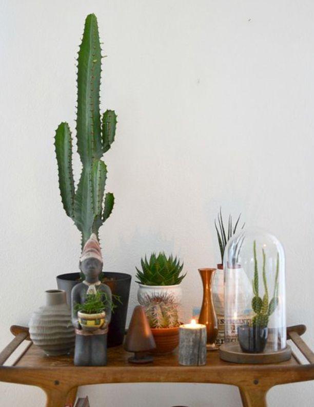 Patru moduri simple prin care poţi aduce verdele în casă
