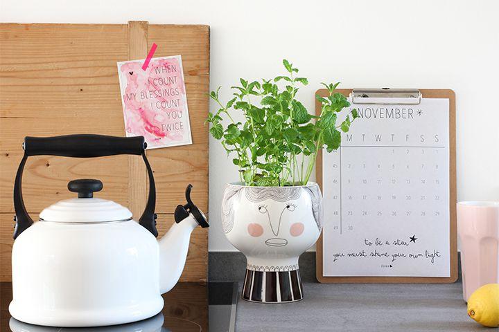 Plante care te ajută să depășești depresia de iarnă