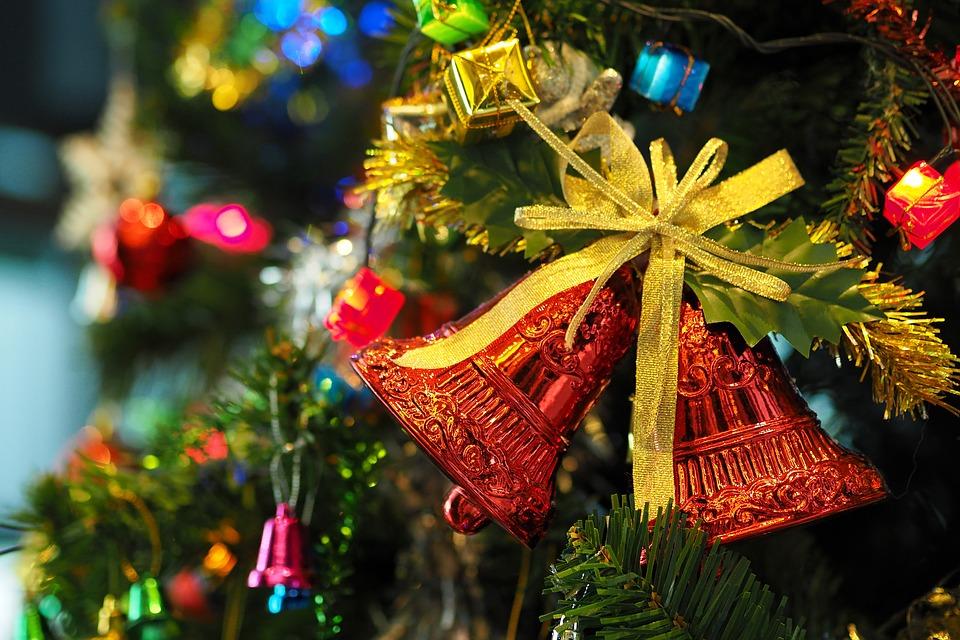 Cum scapi de insectele și gândacii din bradul de Crăciun